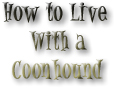 Learn How To Live With A Coonhound